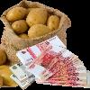 Изображение - Как зарабатывать 3000 в день kak-zarabotat-na-ovoshah
