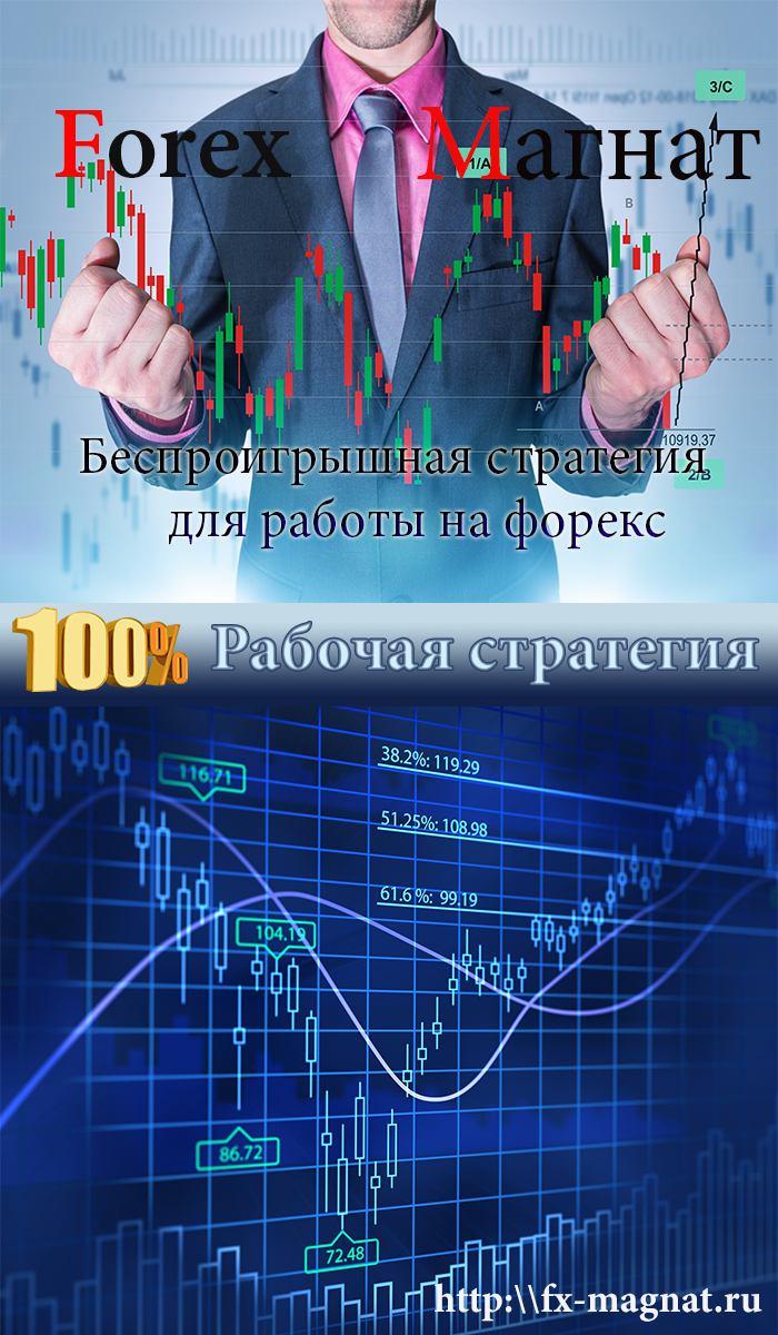 Forex-magnat.com margin level форекс это