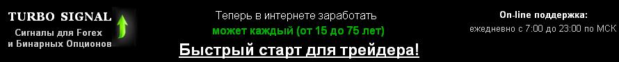 15z31
